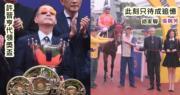 【吳婉芳未現身馬場】胡家驊愛駒「喜蓮獎星」奪冠 許晉亨仰天代捧盃
