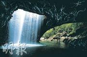 昆士蘭生態遊  洞穴探秘  藍光蟲暗中生輝