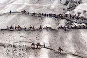 居港意國記者足迹遍90國 浪遊世界尋異域靈魂