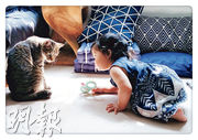 童讀好書﹕本地繪本入圍豐子愷童書獎  港媽花三年 繪育兒養貓點滴