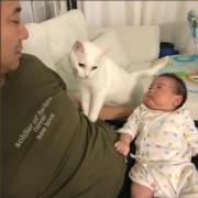 貓貓與囝囝。