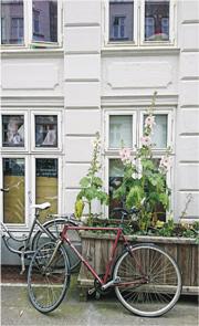 一年一遊哥本哈根