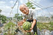 八旬果農  傳統耕作孕育快樂