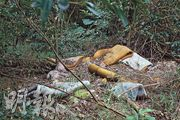 蛇匪盜沉香猖獗時,一度在山邊駐紮,這些懷疑是他們當年留下的牀墊。(林俊源攝)