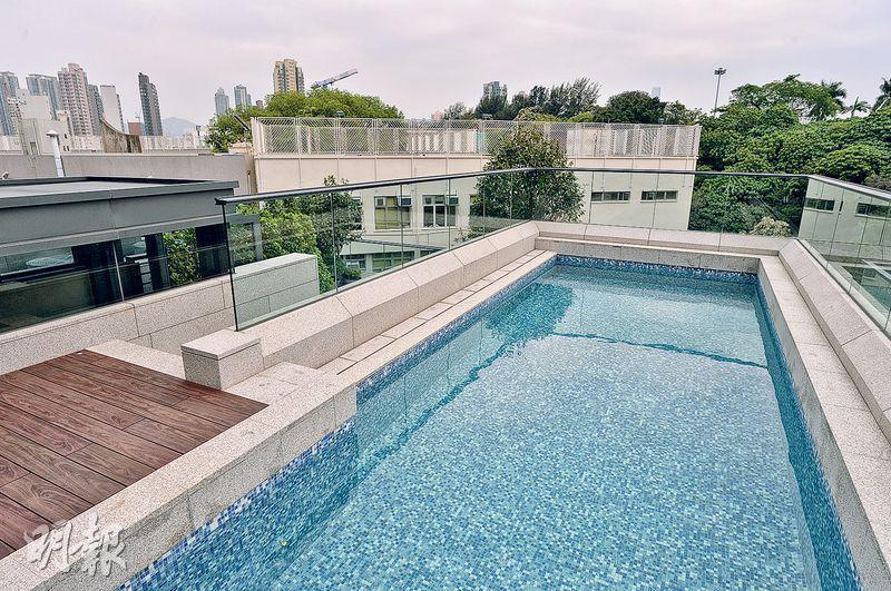 每幢洋房其中一個特色之處,是於天台設有私家泳池。