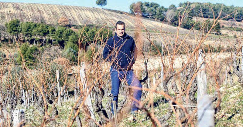 酒莊13公頃葡萄園更像是莊主Jerôme Bressy的花園,用生物動力法悉心耕種,一公頃的老葡萄藤釀造不出2000瓶紅酒,不到法定產量的三分之一。堅持信念需要孤獨地面對葡萄園的清淒。