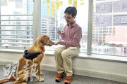 One Degree創辦人及行政總裁郭彥麟稱,目前香港有56萬隻寵物貓狗,但寵物保險滲透率僅2%至3%,遠低於歐洲的兩成。(曾憲宗攝)