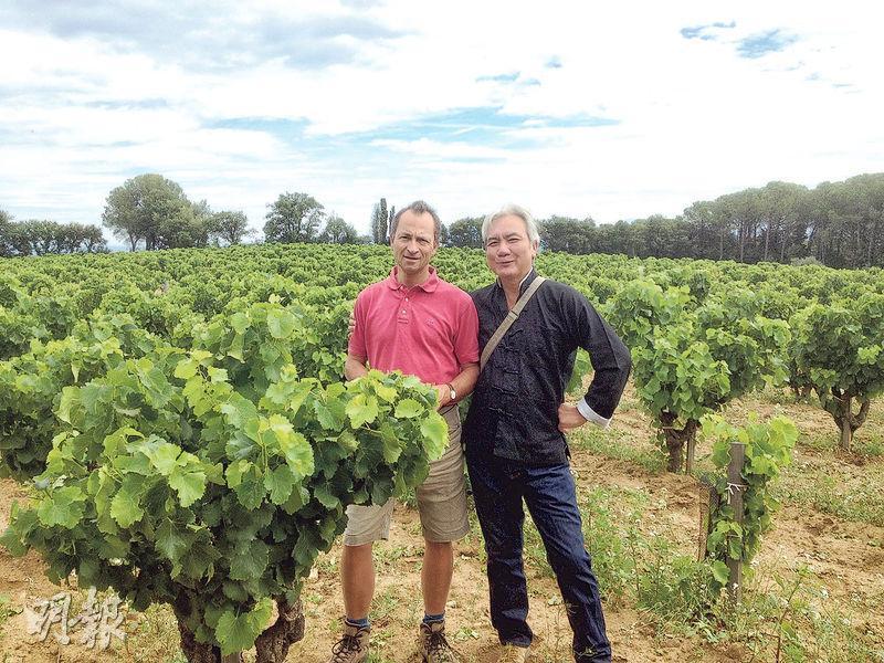 葡萄園每公頃只有3500棵左右的葡萄藤,怪不得一公頃產出還不到2000瓶。每次見到莊主Emmanuel Reynaud都會從他的交談中增添對紅酒的知識。
