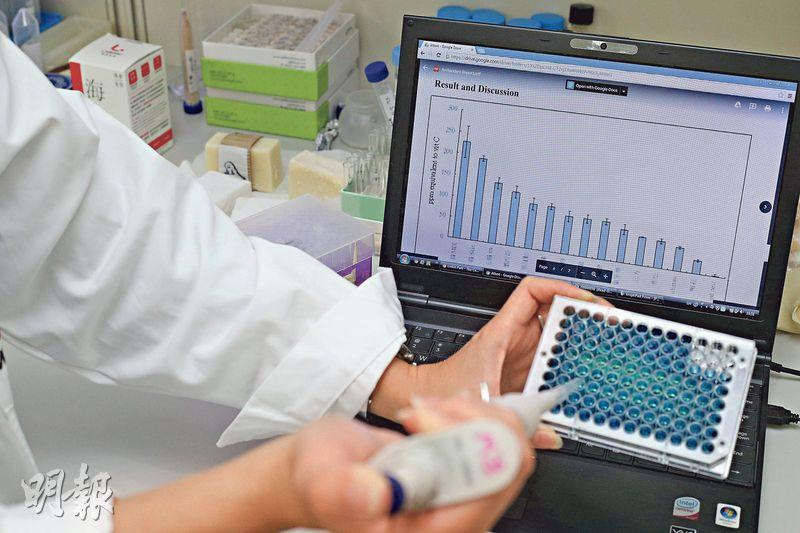 立威生物科技除了搜尋外國大學研究資料之外,還自行測試研究多種海參,以及和本地大學合作。圖為其員工正在測試海參的抗氧化成分。(曾憲宗攝)