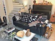 客廳佈局:室內設計及家俬以木製、黑白色和金屬風格為主。