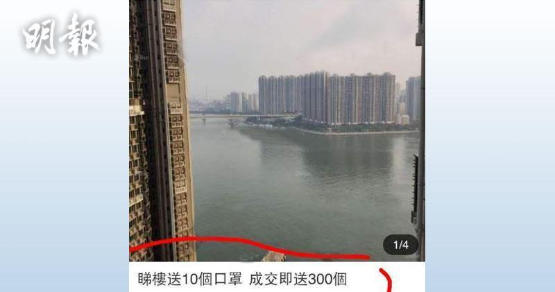荃灣海之戀