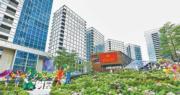 習近平周三出席深圳經濟特區慶祝大會 深圳概念股亮眼