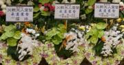「波叔」靈堂內今天出現6名兒子的花牌,包括之前不為外界所認識的「耀鴻」,估計他是「波叔」第六名兒子。