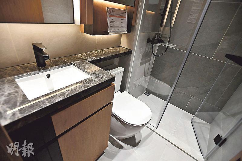 浴室櫃內設有插頭,方便戶主使用風筒等電器。(劉焌陶攝)