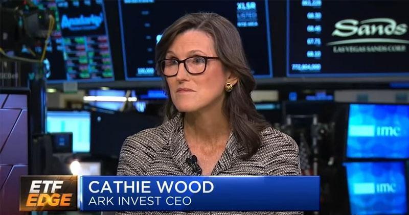 「契媽」Cathie Wood旗艦基金上月已沽清中概股