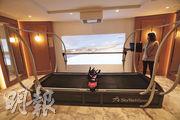 項目住客會所內設五大主題,當中的「雪國體驗」,設有Ski Tech滑雪模擬器等。