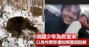 俄國16歲少年為救幼堂弟 以身作餌引開棕熊 慘遭肢解掩埋