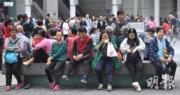 【港珠澳大橋】剛過去周末逾200團登記 旅議會:仍有團疑違規但難判定是否違法