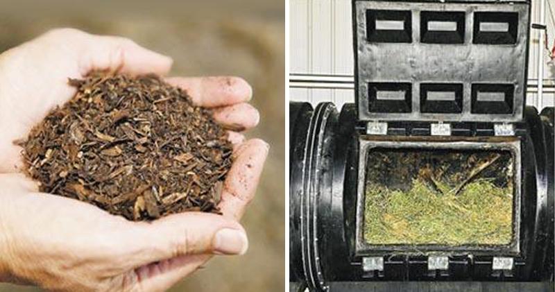 美國華盛頓州料明年2月推出「堆肥葬」 「遺體堆肥」30日完全分解