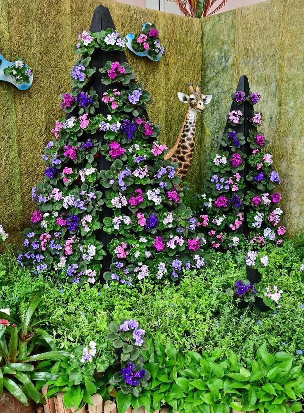 非洲紫羅蘭展 香港公園12月1日起免費觀賞