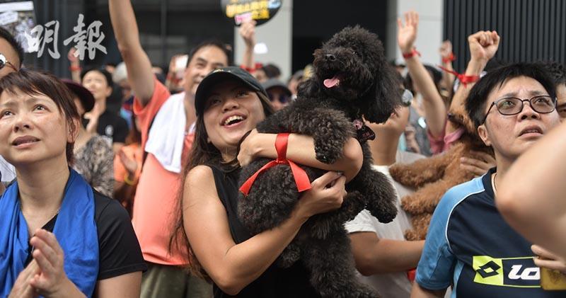 6000人遊行促落實動物福利法