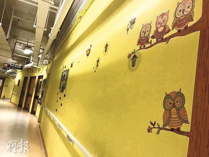 黃大仙醫院今年初裝修病房後設立復康中心,並增設長達80米的復康長廊(圖),每隔1米有圖案標示,牆身採用明亮顏色及貓頭鷹、小鳥等動物圖案設計,讓病人散步時保持開朗心境。(梁杏怡攝)