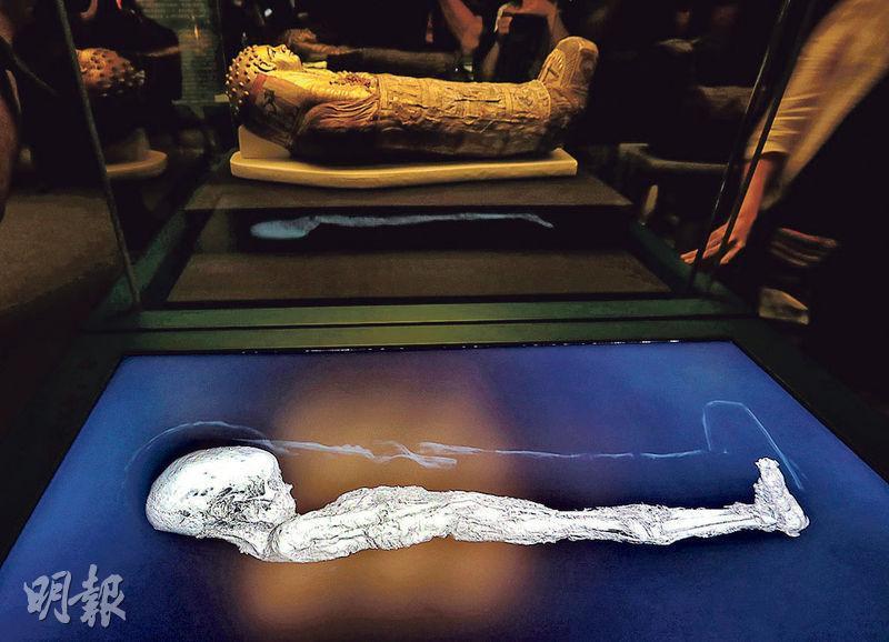 這具幼童木乃伊為男性,死亡時約2歲,長約85.5厘米,於埃及哈瓦拉發現,相信屬約公元40至60年的木乃伊。這具木乃伊蓋上了數件不同的泥紙棺,手持玫瑰與桃金娘花束;其塗金面具上的披風把他部分頭部及肩膀覆蓋,露出鬈髮,是希臘與羅馬時期的典型特色。他經大英博物館以電腦斷層掃描後,沒有發現任何病理情况。(李紹昌攝)
