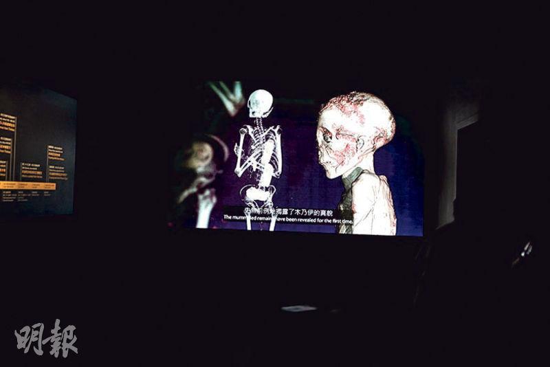 大英博物館近年以電腦斷層掃描(CT Scan)分析古埃及木乃伊的性別、死前年齡及身體狀况。今次展覽展示的掃描圖像及片段(圖)會揭示木乃伊的骨骼及牙齒等狀况,及昔日遺體防腐師如何處理遺體,例如部分遺體的腸胃被取走後,填補上樹枝等物件。(李紹昌攝)