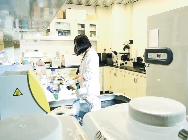 學生正準備生物材料, 進行細胞組織工程實驗。