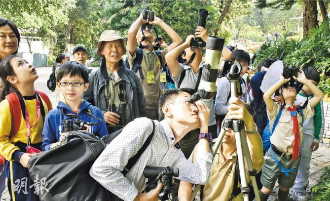 老幼同樂——香港觀鳥會的年度活動——香港公園綠色大搜索,小朋友與老友記相處融洽。(圖:受訪者提供)
