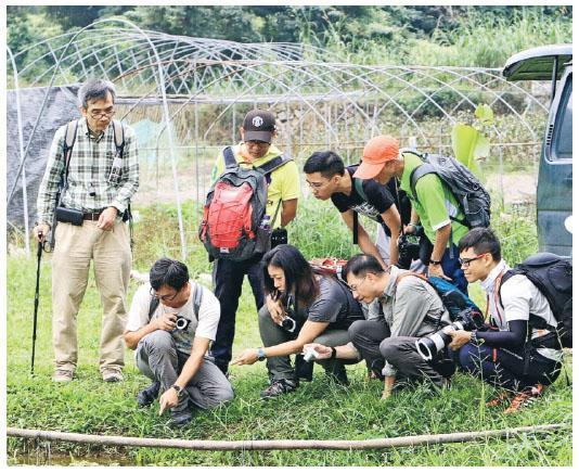 Dickson開創了特種生態旅行——蜘蛛本地田野生態記錄。