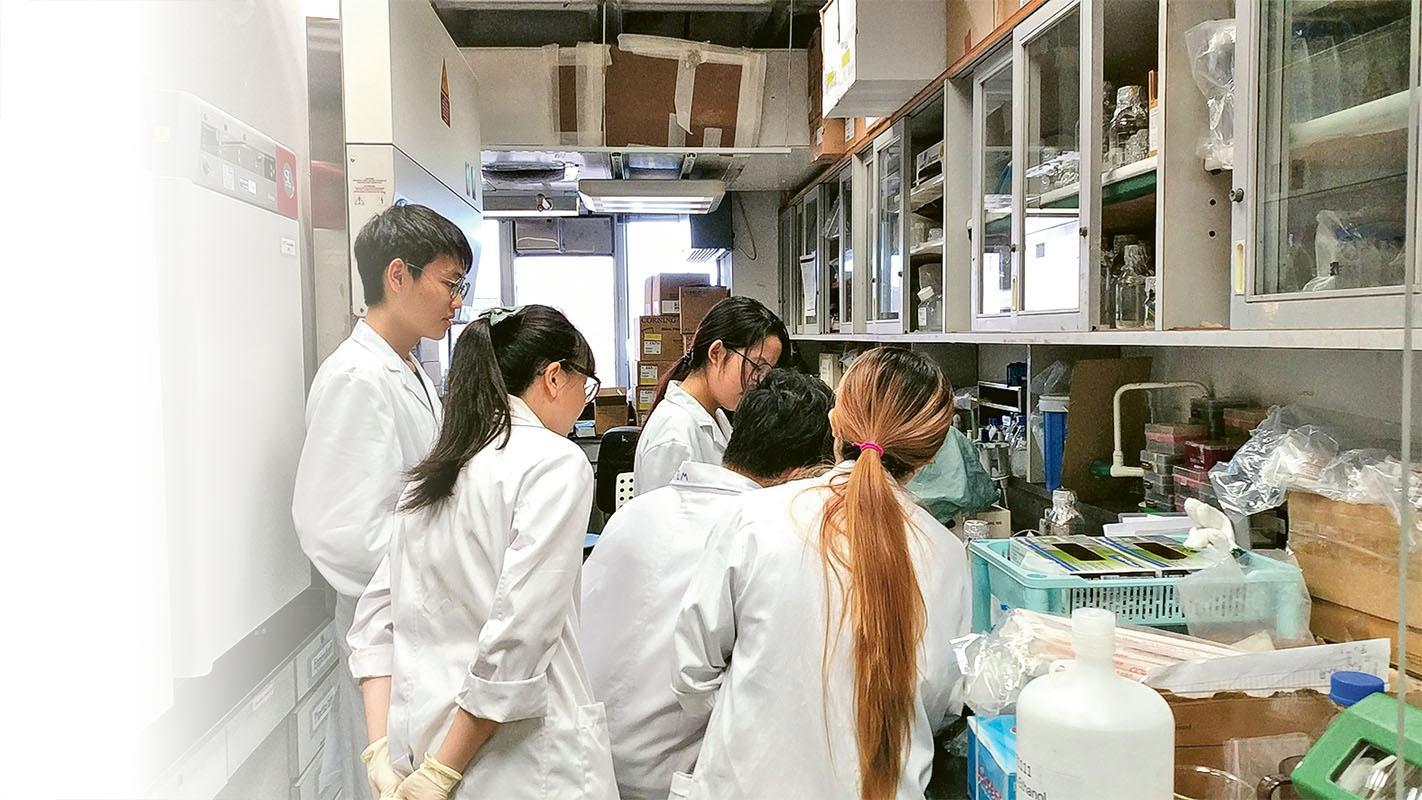 翁建霖教授與科研團隊 繼續積極進行 「個人化 幹細胞療法」 的研究。