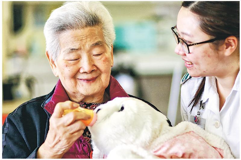 病人游老太(左)今年初開始接受機械寵物治療,不時為小白梳毛及餵食,女兒指母親病情有改善,現能自行如廁和洗臉,認為治療有效。(沙田醫院提供)