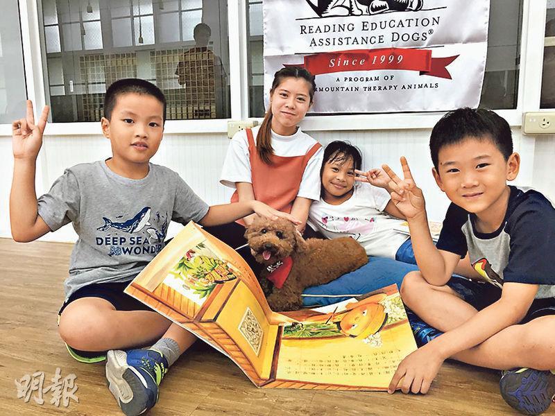 在台修讀寵物美容學士課程的港生袁卓瑩(後左)參觀學系舉辦的學習輔導犬計劃,訓練小狗陪同小學生學習。(王丹麟攝)