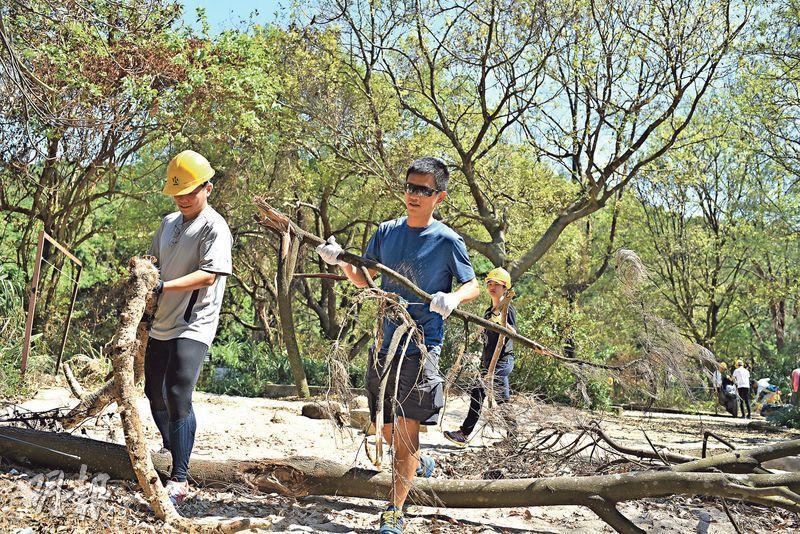 勿亂鋸樹——山竹吹倒大批樹木,郊遊徑石屎化關注小組發起人曾小強(前右)說,市民不應胡亂鋸斷倒樹,移樹時也應該將樹木放置在平坦安全的地方,避免製造新的陷阱。(賴俊傑攝)