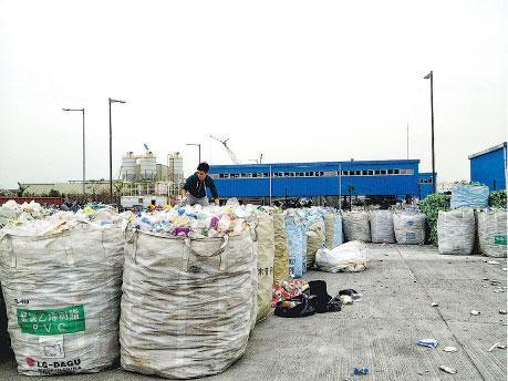 回收達人——「垃圾仔」Kevin爬在回收垃圾上,尋找膠樽。(受訪者提供)