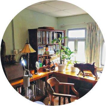 愛家收藏——舊家具為阿騫家居的主調,連貓兒也喜歡行走在木與木之間。(受訪者提供)