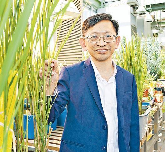 浸大生物資源與農業科學課程主任黃煥忠(圖)說,會為主修「生物資源與農業科學」的所有學生提供實習機會,如到漁護署實驗農場或海外受訓。(浸大提供)
