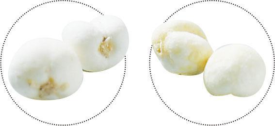 外表相似——川貝母(左)出產於四川,平貝母(右)出產於東北,兩者外表相似,但價格相差多倍。(黃志東攝)