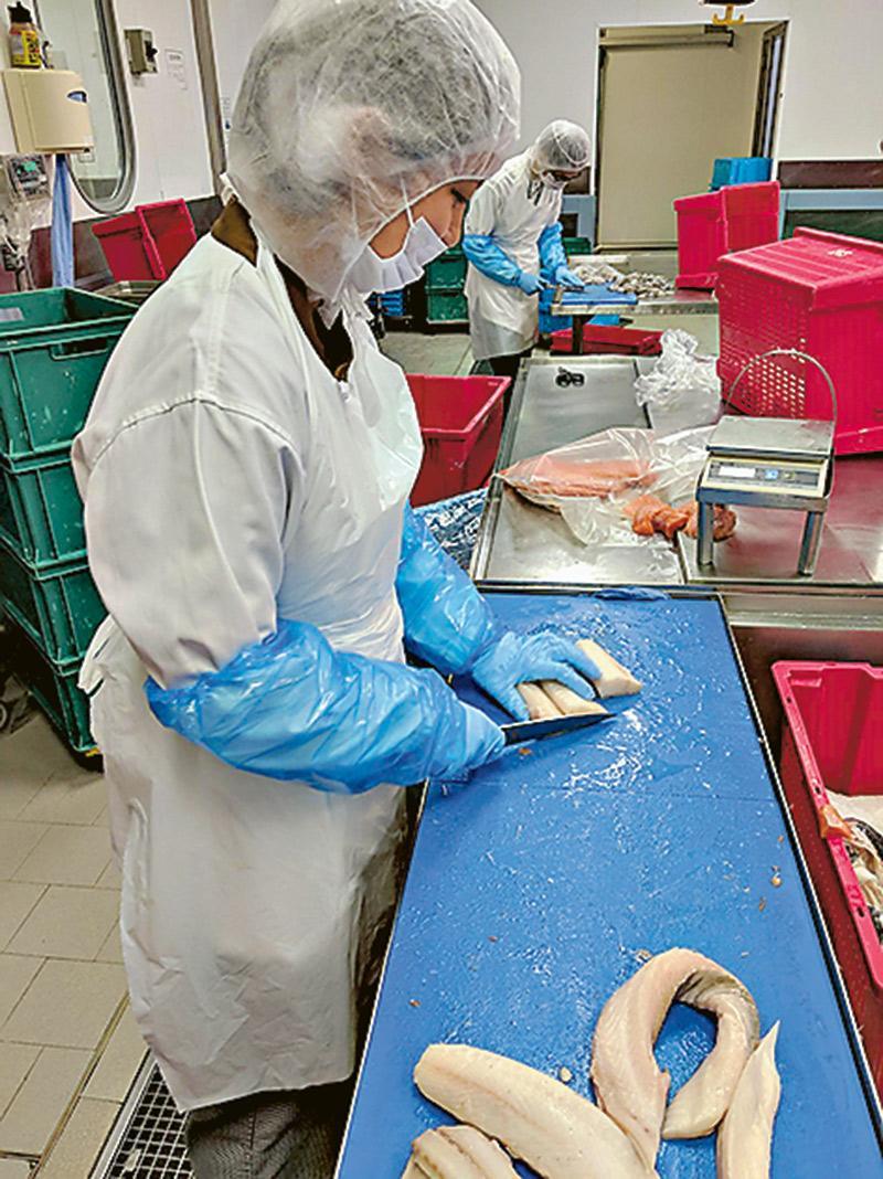 喜歡烹飪的梁海澄,透過參加「青 少年招聘計劃」入職CPCS,成為 初級廚師後,令她更了解「飛機餐」 背後的繁複工序,分工仔細,每一 環節都不可掉以輕心。(圖為她在切 魚房工作)