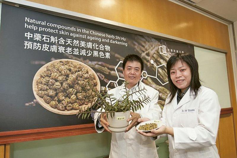 中醫藥學院張宏杰教授(左)團隊發現中藥材「石斛」含天然美膚化合物,能有效預防皮膚衰老並有抗黑色素形成的功能。