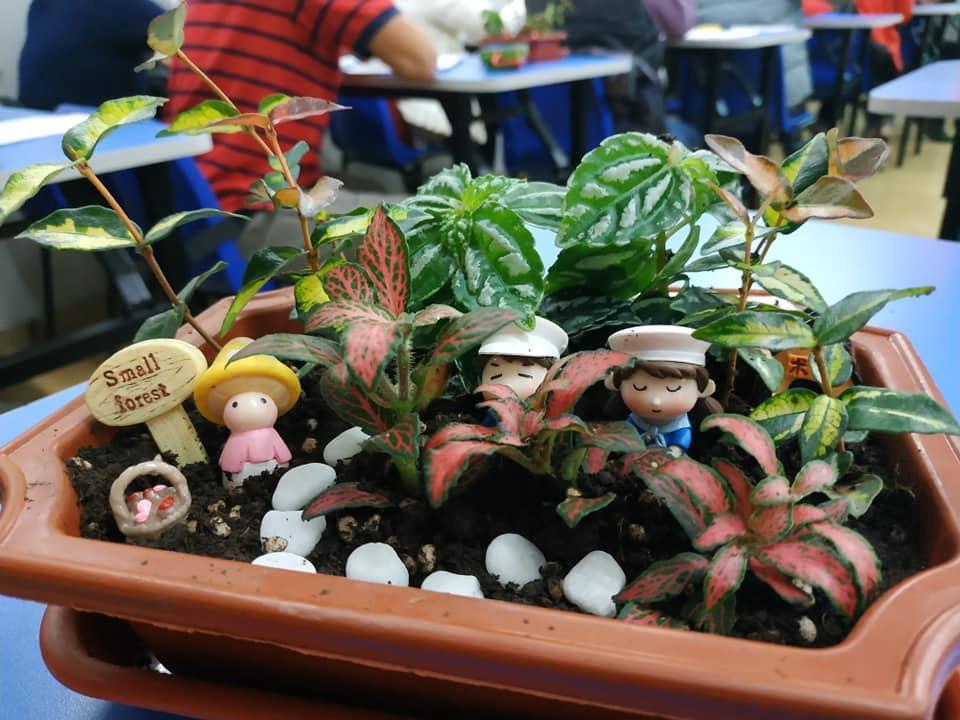園藝治療師的工作是因應服務對象的不同需要,進行評估、分析及訂下目標,繼而選擇及設計和帶領最適合的園藝活動。(圖由受訪者提供)