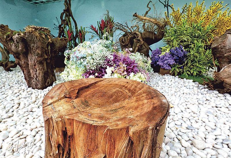 花展園景擺設「春天的活力」,以畀山竹吹塌嘅樹木,配上各種春天花草塑造而成。(李紹昌攝)