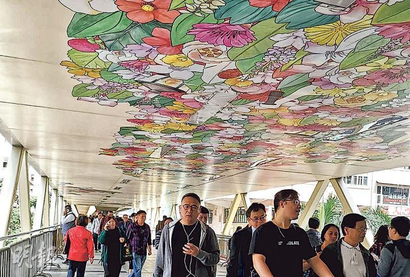 灣仔柯布連道行人天橋接駁港鐵站、會展等,大家行經可以抬一抬頭,欣賞天橋天花嘅「一點綠」。(相片由「#ddHK 設計#香港地」提供)