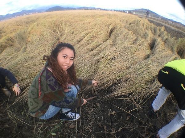 Cman曾在北韓體驗當農夫的辛勞。(受訪者提供)