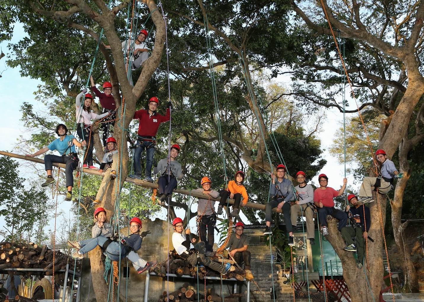 樹藝行業設不同工種,其中攀樹師和樹藝師的分工可說是一文一武。(圖由香港樹木學會提供)