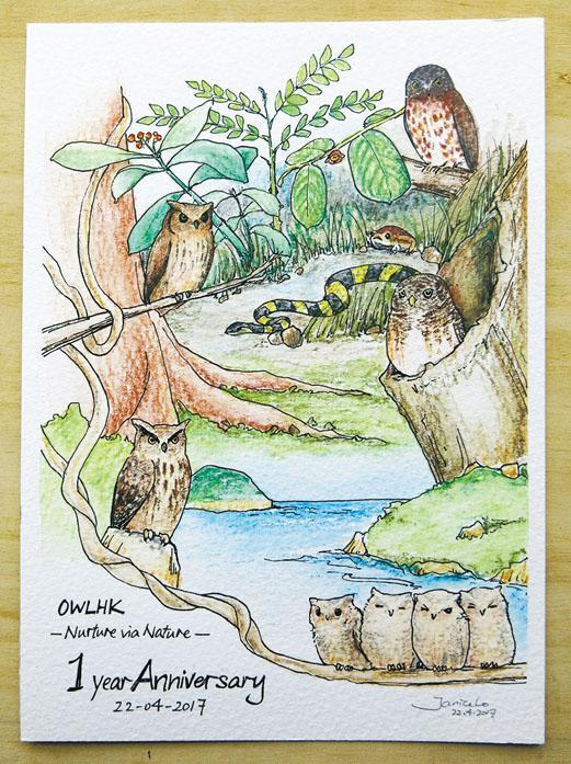 Janice為慶祝OWLHK一周年畫的畫,4隻大貓頭鷹為他們4個創辦人。她說這畫同時也慶祝機構終於有了4個實習生,畫中的4隻小貓頭鷹就是他們了。(受訪者提供)