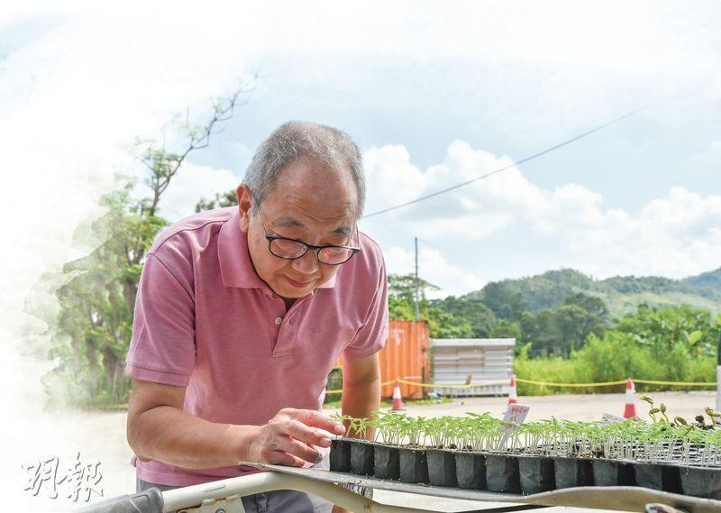 後悔耕田?——「在香港從事農業是困難的。有沒有後悔呢?可能有時會有﹙笑﹚,不過既然選擇了,我不會選擇望返轉頭。」曹sir說。(黃志東攝)