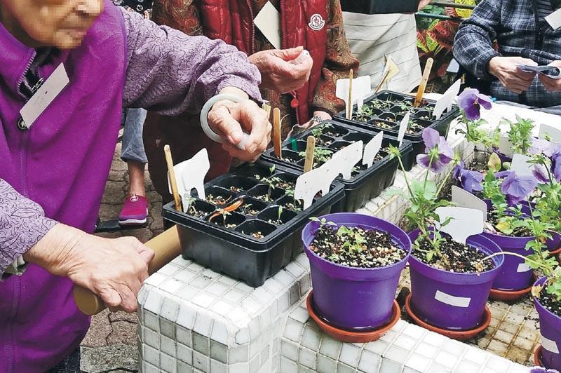 園藝治療師在設計園藝活動時需作出不同考慮,如遇到活動或平衡能力欠佳者,可輔以改良式及具支撐功能的工具,如升高式花槽及扶手。