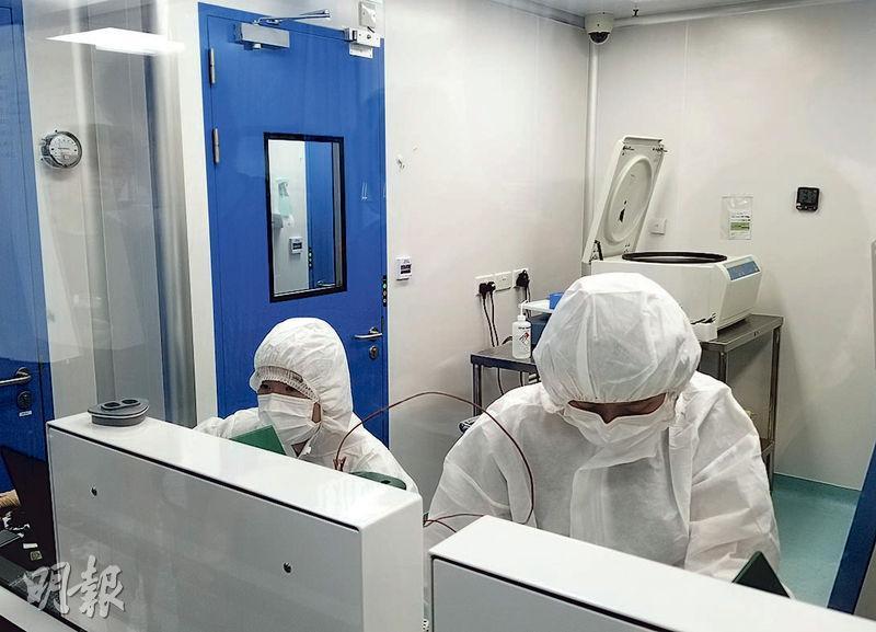 「臍帶血單核細胞庫」蒐集及處理臍帶血過程嚴格,包括設「潔淨室」(圖)確保血液細胞沒受細菌感染,另樣本要保存在-150℃以下的液態氮儲存缸中。(高卓怡攝)
